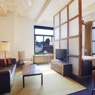 ニューヨークの小さいコンテンポラリースタイルのおしゃれなLDK (白い壁、据え置き型テレビ) の写真