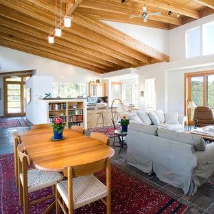 Esempio di un ampio soggiorno minimal aperto con pareti bianche, pavimento in terracotta e pavimento multicolore