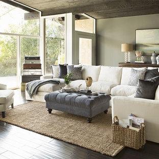 Immagine di un grande soggiorno design chiuso con pareti grigie, parquet scuro e nessun camino