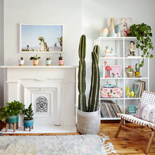 Color, Cactuses Bring California to New Jersey