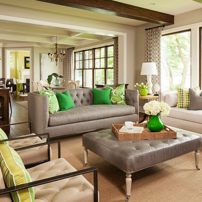 Living Room Ideas Design on Minneapolis Home Green Design Ideas  Pictures  Remodel And Decor