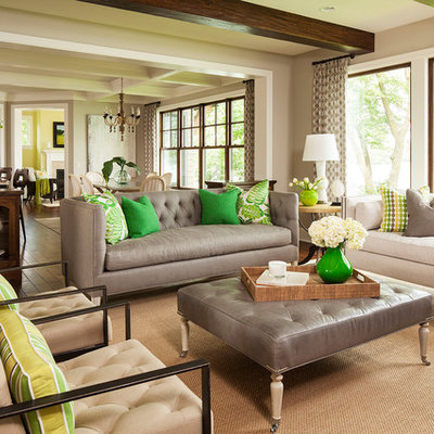 Inspiration for a transitional living room remodel in Minneapolis