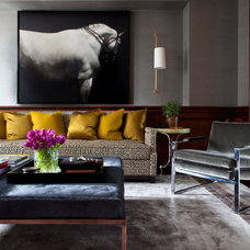 Transitional Living Room by Summer Thornton Design, Inc