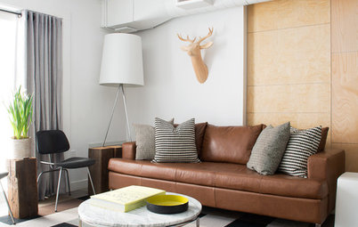 Houzz Tour: Nature Suggests a Toronto Home's Palette