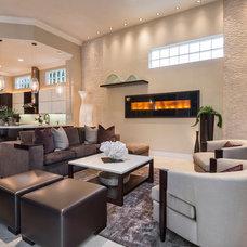 Contemporary Living Room by Barbara Rooch Interior Environments, Inc.