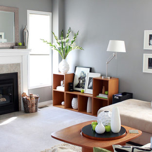 Living room - contemporary carpeted living room idea in Ottawa with gray walls, a standard fireplace and a tile fireplace