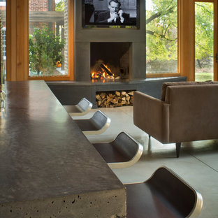 Inspiration for a contemporary concrete floor living room remodel in New York with a concrete fireplace