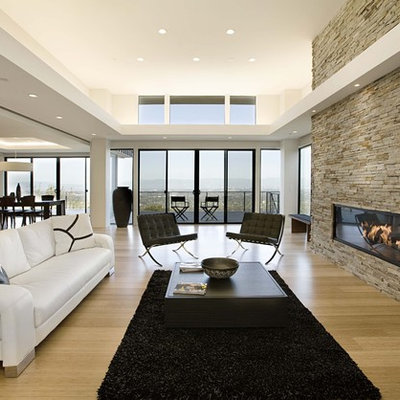 Living room - contemporary bamboo floor living room idea in San Francisco with a ribbon fireplace and a stone fireplace