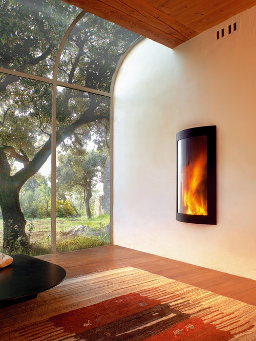 Fire And Ice Fireplace | Houzz