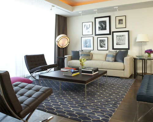 Wood floor area rug home design ideas pictures remodel - Contemporary rugs for living room ...