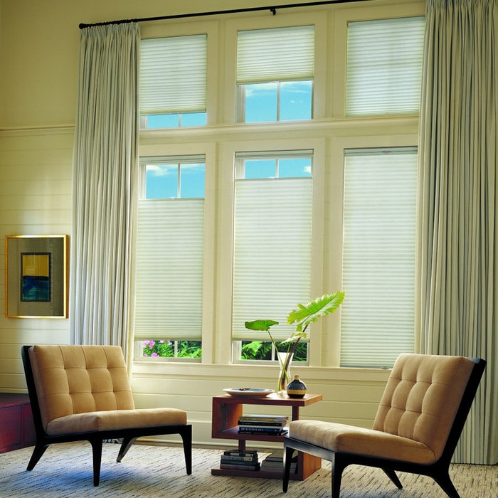 Pleated and Cellular Shades