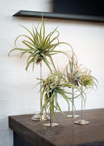 Salon by Garden Studio