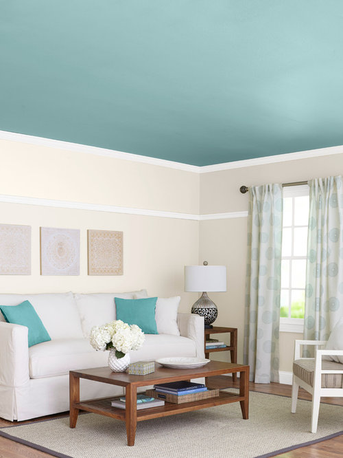 Turquoise Living Room Design Ideas Renovations Amp Photos
