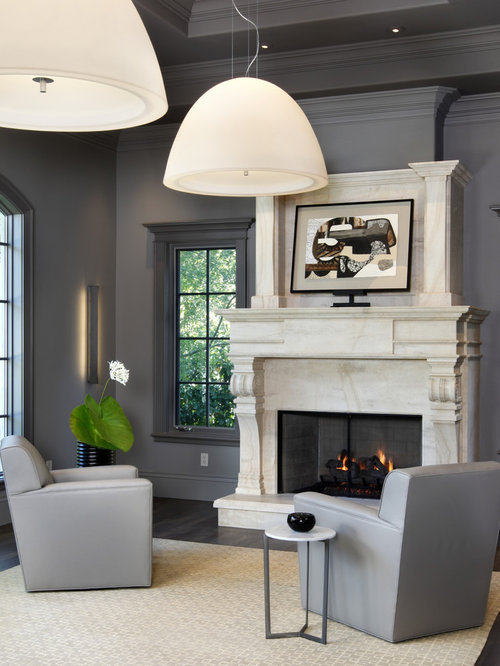Transitional Living Room Photo In San Francisco With Gray Walls And A  Standard Fireplace
