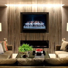 Contemporary Living Room by Shawn Penoyer Interiors