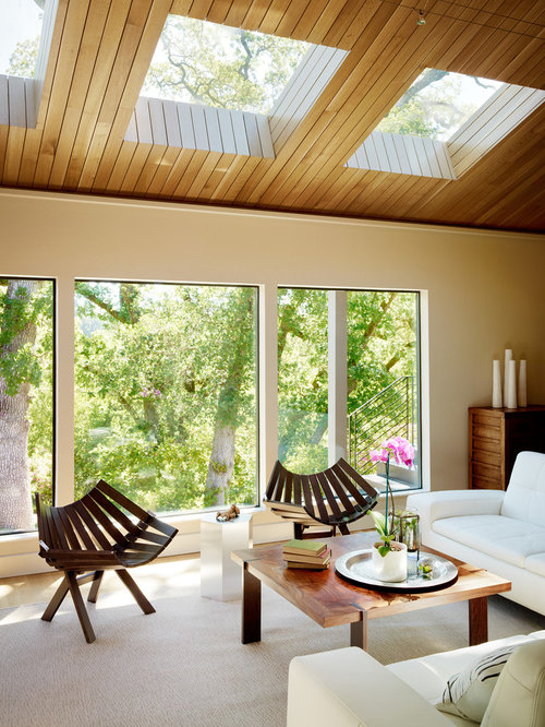 Skylight Ceiling Home Design Ideas Pictures Remodel And