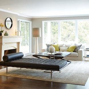 Ispirazione per un soggiorno classico con pareti grigie, parquet scuro, camino classico e nessuna TV