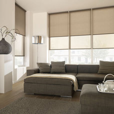 Contemporary Living Room by Lucid Shading LLC