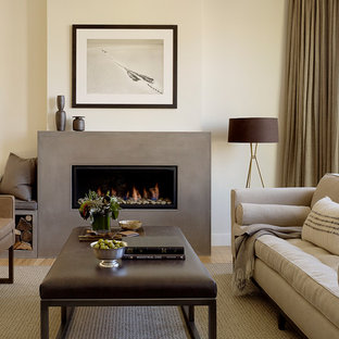 Example Of A Trendy Living Room Design In San Francisco With Concrete Fireplace