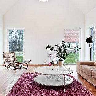 Esempio di un soggiorno scandinavo