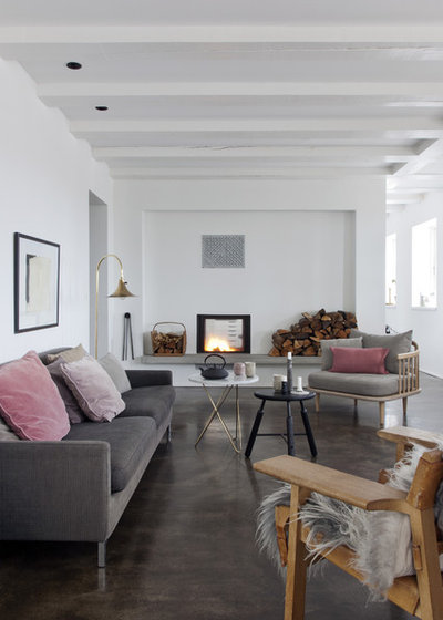 Scandinavian Living Room by Raul Candales