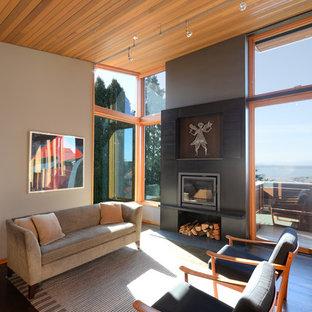 Diseño de salón abierto, moderno, de tamaño medio, sin televisor, con paredes grises, suelo de madera oscura, estufa de leña y marco de chimenea de metal