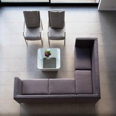 Modern Living Room by Daniel Marshall Architect