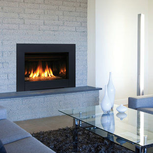 Trendy living room photo in Orange County with a standard fireplace