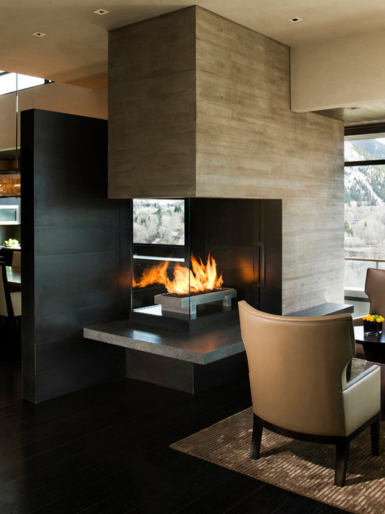 See through Gas Fireplace Houzz