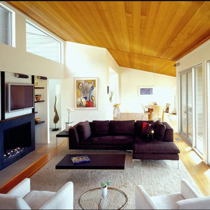 Mid Century Revival Living Room