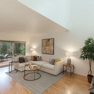 Immagine di un soggiorno moderno di medie dimensioni con pavimento in laminato