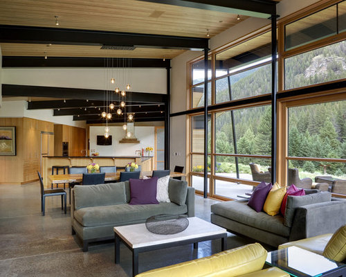 Exposed Steel Beams Home Design Ideas Pictures Remodel
