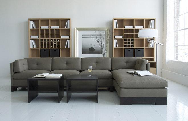 Modern Living Room by Robert Allen Design