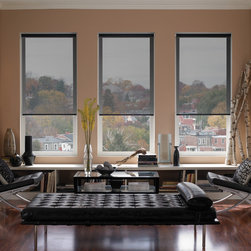 Roller Blinds - DSC Window Fashions offers custom made designer roller shades, Great for residential or commercial settings. Available in transparent, translucent and blackout fabric selections. Roller Shades control daylight, eliminate heat and increase energy savings. Green Guard Certified.  Ideal for expansive windows. Motorization is available.