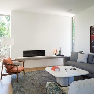 オースティンの小さいコンテンポラリースタイルのおしゃれな独立型リビング (白い壁、横長型暖炉、漆喰の暖炉まわり、淡色無垢フローリング、茶色い床) の写真