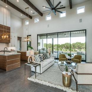 ヒューストンの中サイズのミッドセンチュリースタイルのおしゃれなLDK (白い壁、磁器タイルの床、標準型暖炉、石材の暖炉まわり、壁掛け型テレビ、グレーの床、フォーマル) の写真