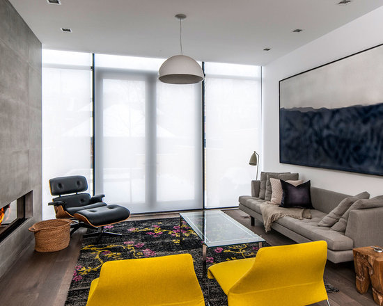 Living Room Blinds Houzz