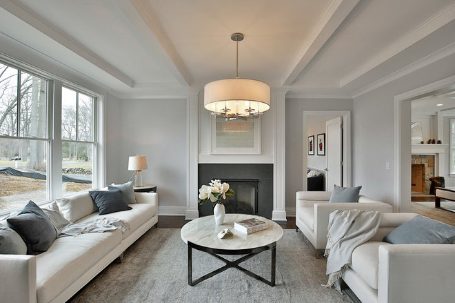 Transitional Living Room by Meridith Baer Home