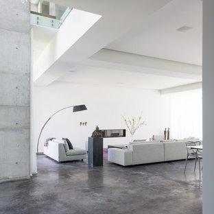 マイアミの中サイズのモダンスタイルのおしゃれなLDK (フォーマル、白い壁、コンクリートの床、漆喰の暖炉まわり、テレビなし、横長型暖炉、グレーの床) の写真