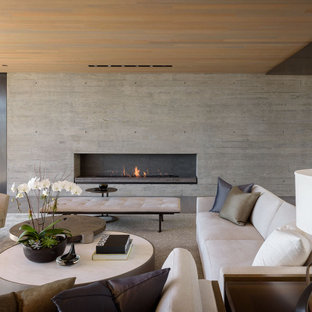 Inspiration for a modern living room remodel in San Diego with a ribbon fireplace and a concrete fireplace