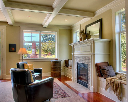 Anderson Windows Reviews >> Windows Flanking Fireplace | Houzz