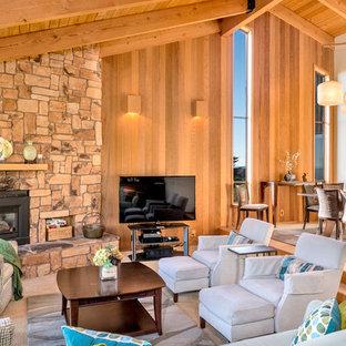 サンフランシスコの中サイズのビーチスタイルのおしゃれなLDK (緑の壁、カーペット敷き、金属の暖炉まわり、据え置き型テレビ) の写真