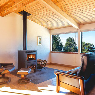 Modelo de salón tipo loft, rural, de tamaño medio, con paredes blancas, suelo de madera en tonos medios, estufa de leña y marco de chimenea de piedra
