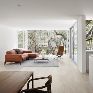 Inspiration for a modern open concept light wood floor and beige floor living room remodel in Austin with white walls