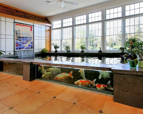 Indoor koi pond for Indoor koi pool