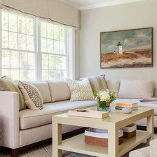Transitional Living Room by Jeanne Finnerty Interior Design