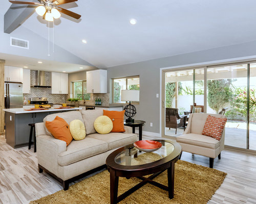 Transitional Living Room Design Ideas, Remodels & Photos | Houzz