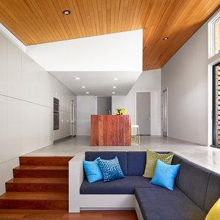 Offenes Mid-Century Wohnzimmer mit weißer Wandfarbe und braunem Holzboden in Austin