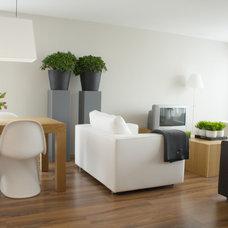 Modern Living Room by Lea Frank Design