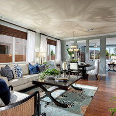 Traditional Living Room by Studio V Interior Design